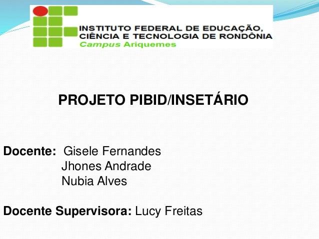 PROJETO PIBID/INSETÁRIO Docente: Gisele Fernandes Jhones Andrade Nubia Alves Docente Supervisora: Lucy Freitas