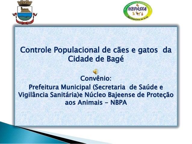 Controle Populacional de cães e gatos da Cidade de Bagé Convênio: Prefeitura Municipal (Secretaria de Saúde e Vigilância S...