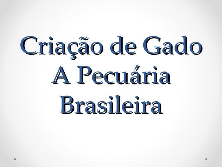 Criação de Gado   A Pecuária   Brasileira
