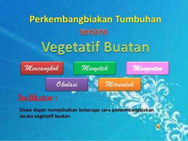 Indikator :Siswa dapat menyebutkan beberapa cara perkembangbiakansecara vegetatif buatanMencangkok Menyetek MengentenOkula...