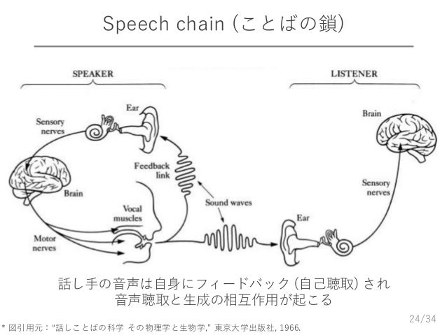 "/34 Speech chain (ことばの鎖) 24 * 図引用元:""話しことばの科学 その物理学と生物学,"" 東京大学出版社, 1966. 話し手の音声は自身にフィードバック (自己聴取) され 音声聴取と生成の相互作用が起こる"