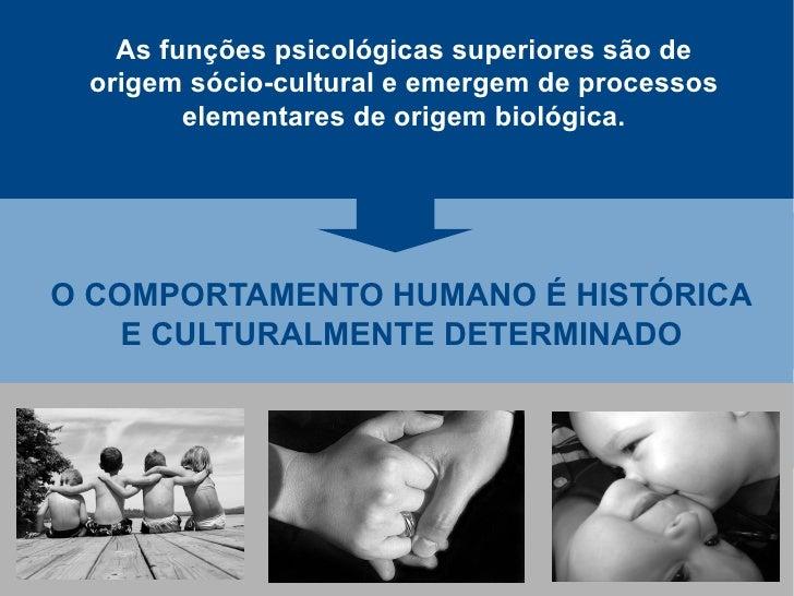 As funções psicológicas superiores são de  origem sócio-cultural e emergem de processos         elementares de origem biol...