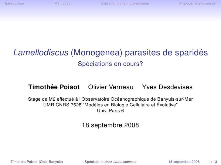 Introduction                Méthodes              Utilisation de la morphométrie        Phylogénie et diversité         La...