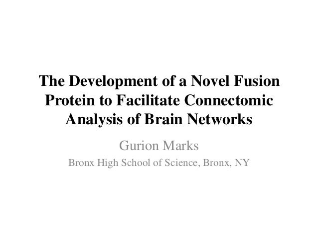The Development of a Novel Fusion Protein to Facilitate Connectomic Analysis of Brain Networks Gurion Marks Bronx High Sch...