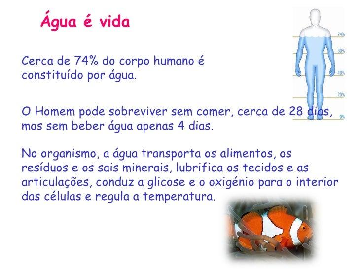 Tag Frases Sobre A Agua No Corpo Humano