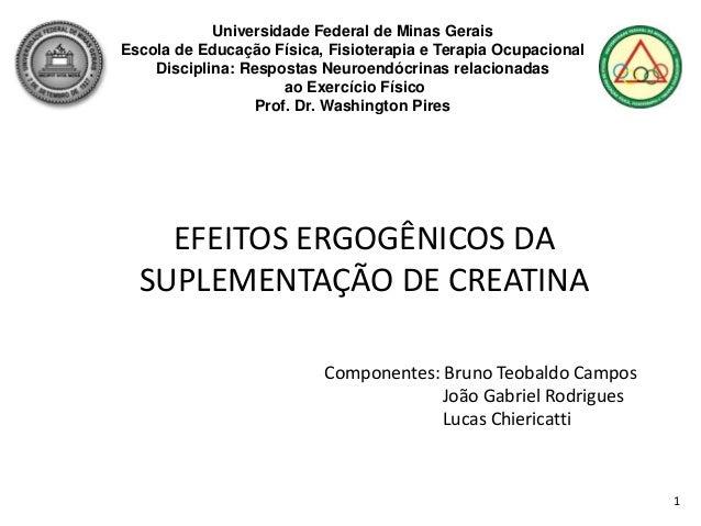1 Universidade Federal de Minas Gerais Escola de Educação Física, Fisioterapia e Terapia Ocupacional Disciplina: Respostas...