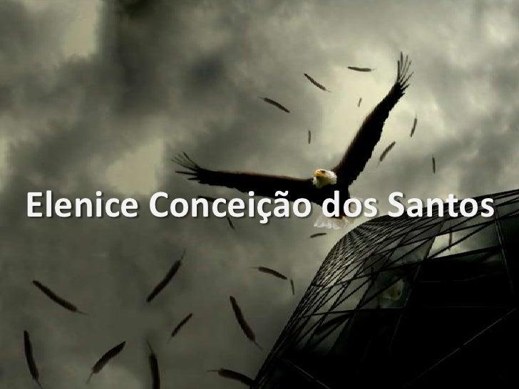 Elenice Conceição dos Santos<br />