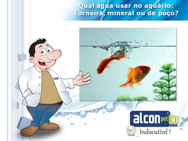 Água ideal para aquários