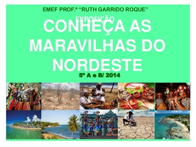 """EMEF PROF.ª """"RUTH GARRIDO ROQUE""""  EXPOSIÇÃO  CONHEÇA AS  MARAVILHAS DO  NORDESTE  5º A e B/ 2014"""
