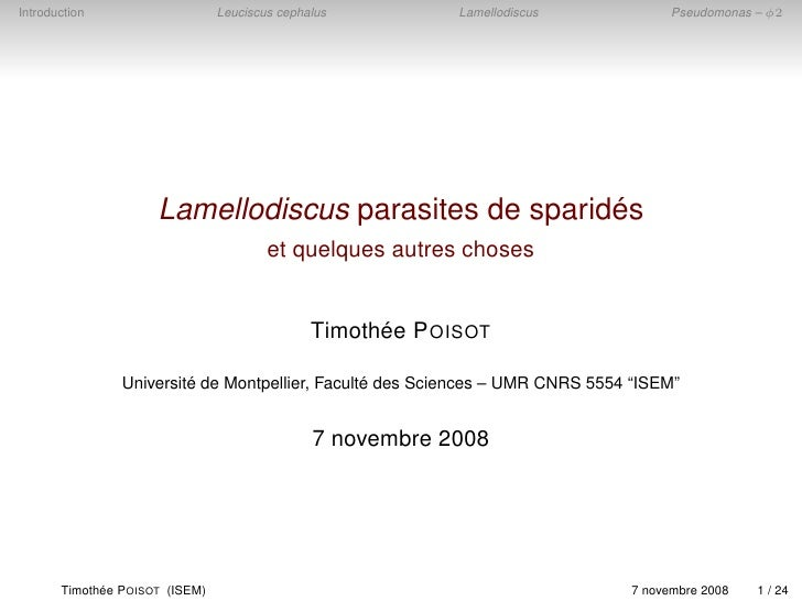 Introduction                     Leuciscus cephalus          Lamellodiscus           Pseudomonas – φ2                     ...