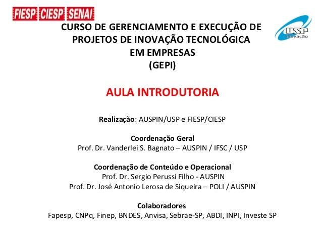 CURSO DE GERENCIAMENTO E EXECUÇÃO DE     PROJETOS DE INOVAÇÃO TECNOLÓGICA                EM EMPRESAS                    (G...