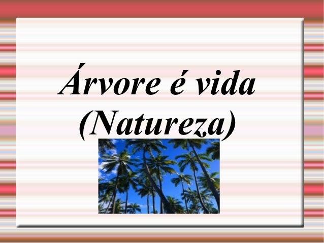 Árvore é vida (Natureza)