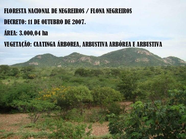 FLORESTA NACIONAL DE NEGREIROS / FLONA NEGREIROS DECRETO: 11 DE OUTUBRO DE 2007.  ÁREA: 3.000,04 ha VEGETAÇÃO: CAATINGA ÁR...