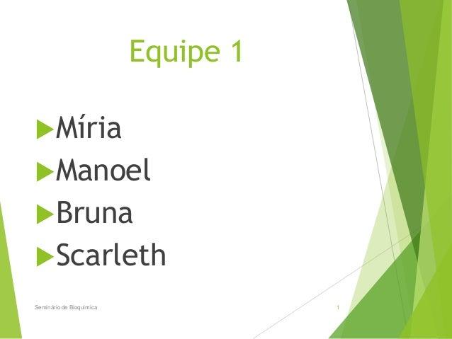 Equipe 1 Míria Manoel Bruna Scarleth Seminário de Bioquimica 1