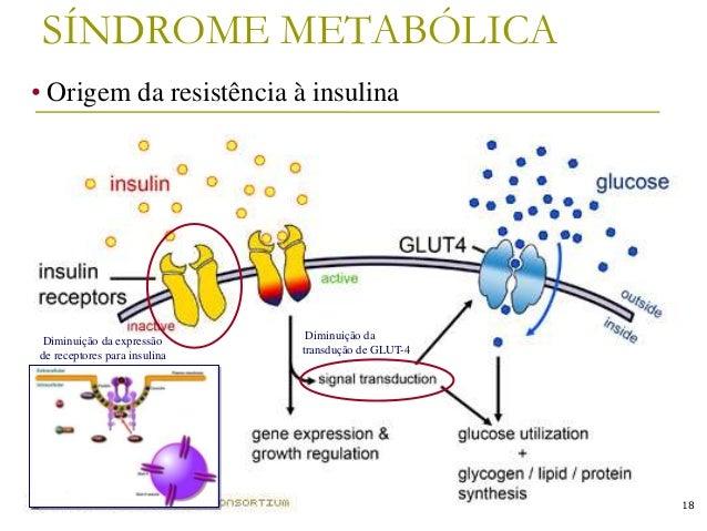 Armario Limpieza ~ Revis u00e3o sobre Diabetes Mellitus