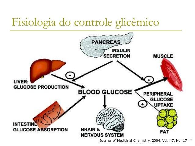 Artigos sobre diabetes mellitus