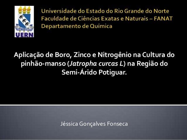 Aplicação de Boro, Zinco e Nitrogênio na Cultura do  pinhão-manso (Jatropha curcas L) na Região do               Semi-Árid...