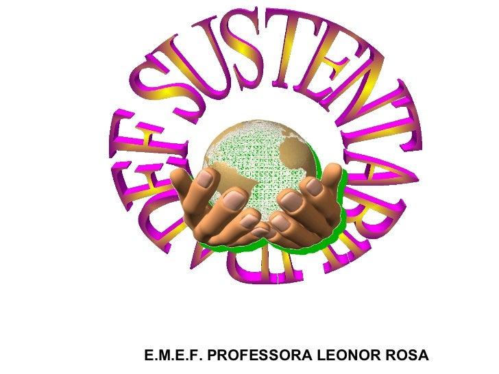 E.M.E.F. PROFESSORA LEONOR ROSA