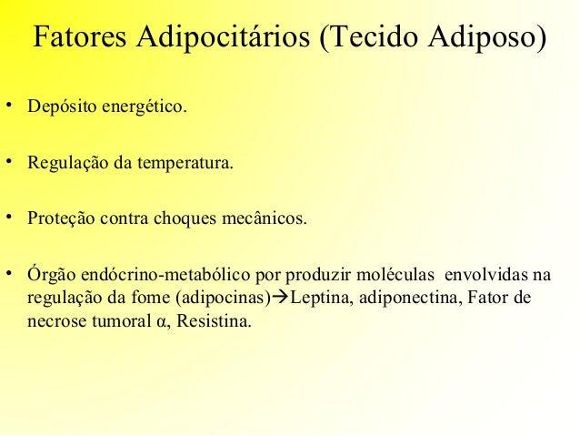 Controle neuroendócrino da fome