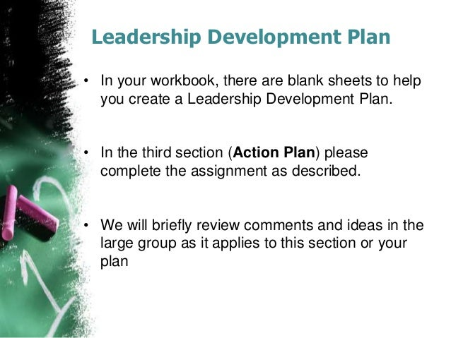 Leadership action plan essay