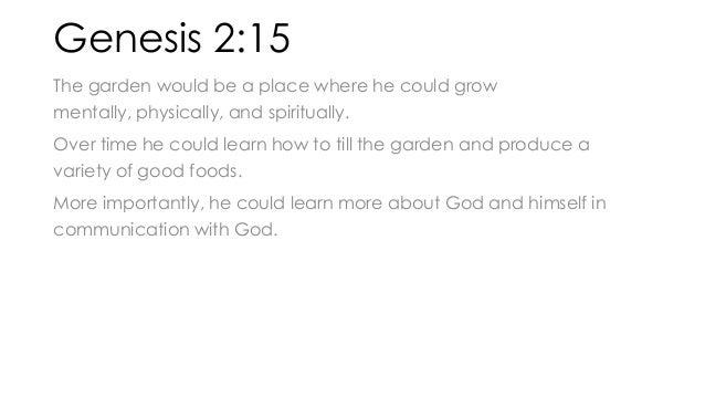 Uniform Study Slides for Genesis 2