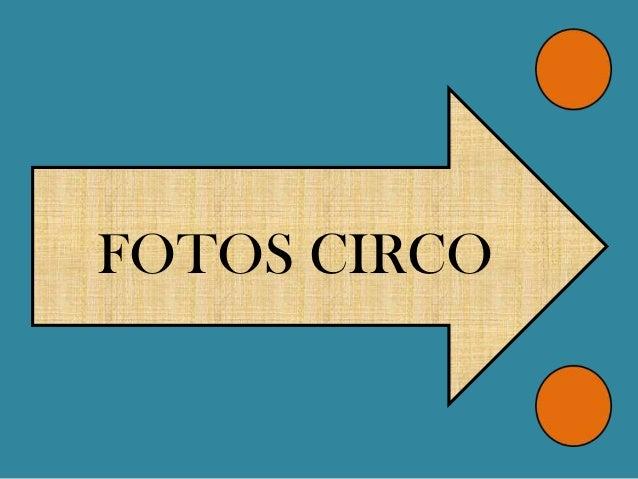 FOTOS CIRCO