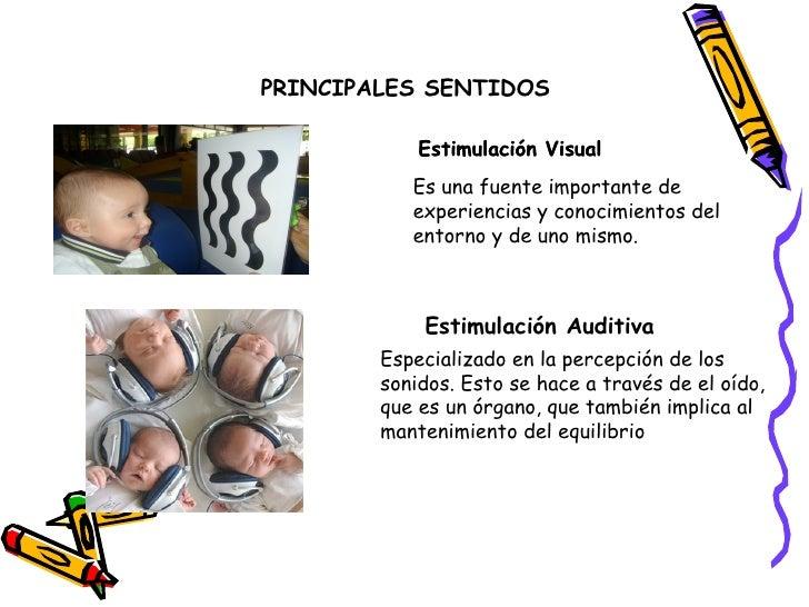 PRINCIPALES SENTIDOS              Estimulación Visual            Es una fuente importante de            experiencias y con...