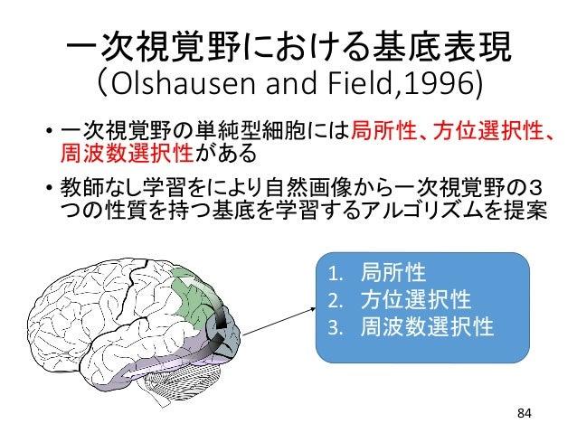 一次視覚野における基底表現 (Olshausen and Field,1996) • 一次視覚野の単純型細胞には局所性、方位選択性、 周波数選択性がある • 教師なし学習をにより自然画像から一次視覚野の3 つの性質を持つ基底を学習するアルゴリズ...