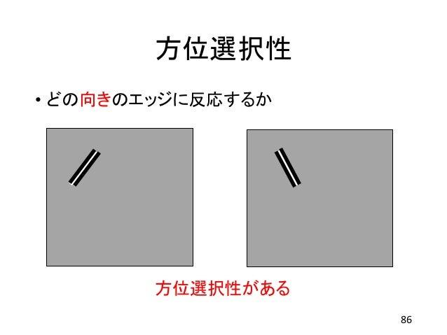 方位選択性 • どの向きのエッジに反応するか 86 方位選択性がある