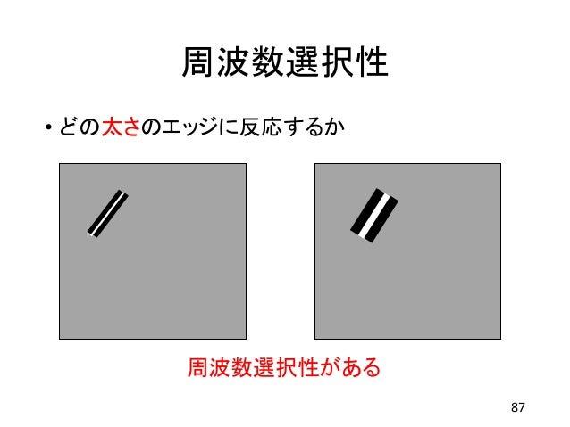 周波数選択性 • どの太さのエッジに反応するか 87 周波数選択性がある