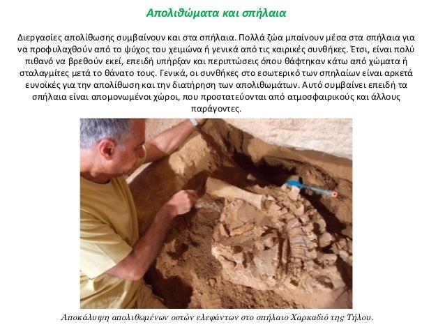 τον ορισμό των απολιθωμάτων του άνθρακα αργικό κάλιο που χρονολογείται αρχαιολογία