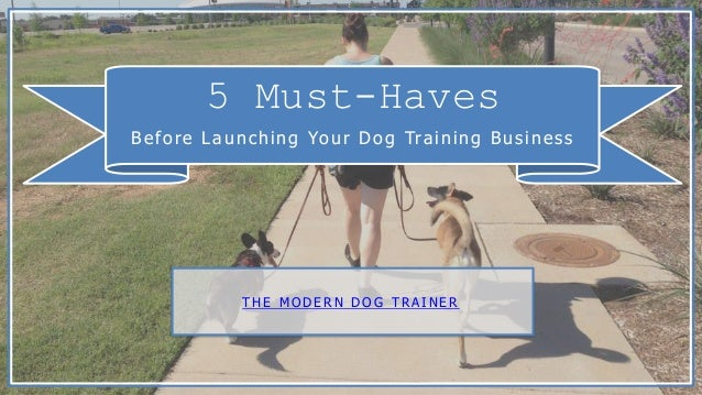 5 Must-Haves Before Launching Your Dog Training Business T H E M O D E R N D O G T R A I N E R