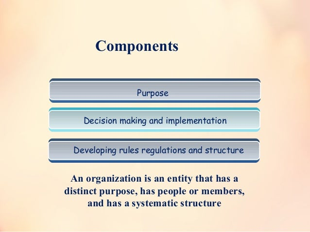 Purpose Decision making and implementation Developing rules regulations and structure An organization is an entity that ha...