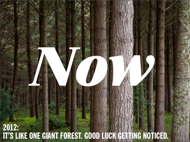 Now2012:IT'S LIKE ONE GIANT FOREST. GOOD LUCK GETTING NOTICED.