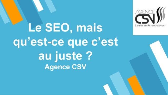 Définition du SEO - Agence CSV C'est l'ensemble des techniques visant à positionner un site web, une page ou encore une ap...