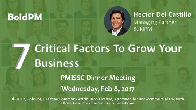 BoldPM Hector Del Castillo Managing Partner BoldPM PMISSC Dinner Meeting Wednesday, Feb 8, 2017 © 2017, BoldPM, Creative C...