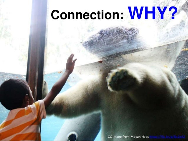 Connection: WHY? CC Image from Megan Hess https://flic.kr/p/8o2eA2