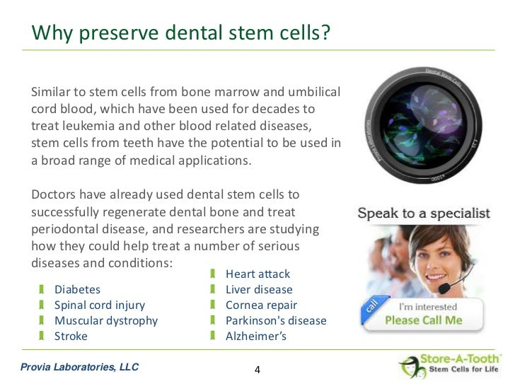 Cord Blood Banking Cost >> Store-A-Tooth™ stem cell banking