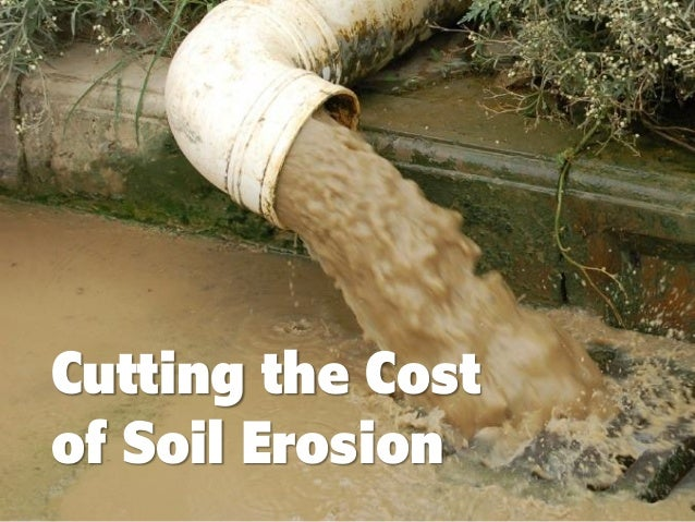 Cutting the Cost of Soil Erosion