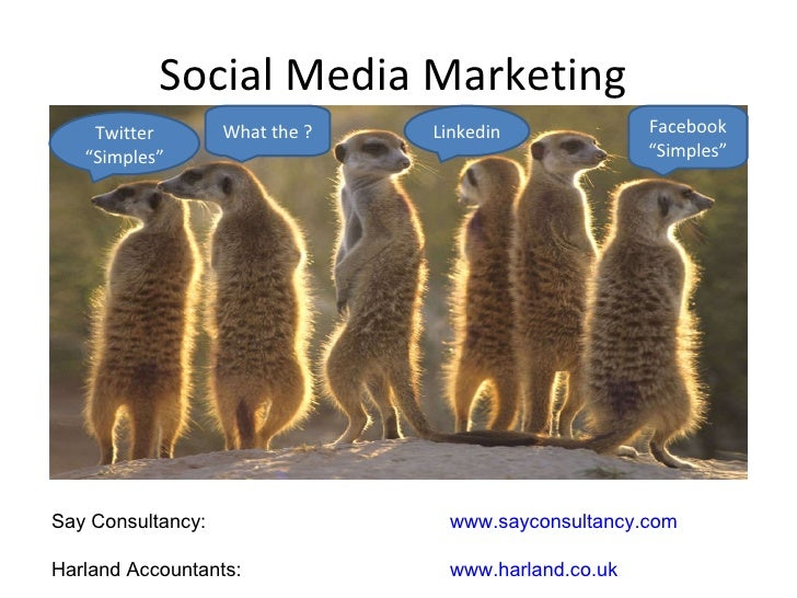 """Social Media Marketing  Facebook """"Simples"""" Twitter """"Simples"""" Linkedin What the ? Say Consultancy:   www.sayconsultancy.com..."""
