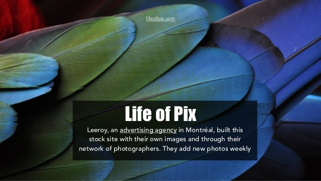 Life of Pix Leeroy, an advertising agency in Montréal, built this stock site with their own images and through their netwo...