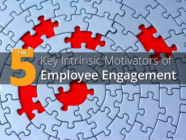 5  THE  Key Intrinsic Motivators of  Employee Engagement