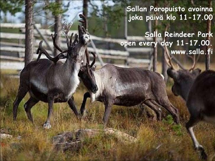 Sallan luonnossa koet huikeita elämyksiä!<br />Enjoy the pure <br />Nature of Salla<br />