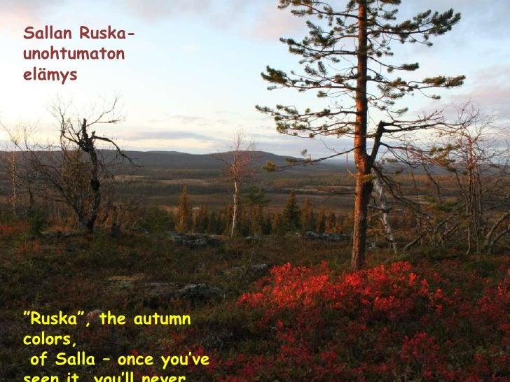 ÄMMIN POLKU–ROUTE OF ÄMMI<br />Ämmin polku on vaativuudeltaan helppo2,3 kilometrin pituinen päiväretki Sallatunturissa. Re...