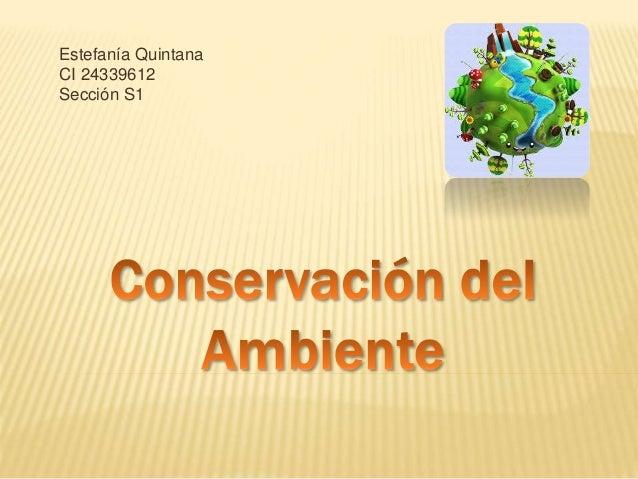 Estefanía Quintana CI 24339612 Sección S1
