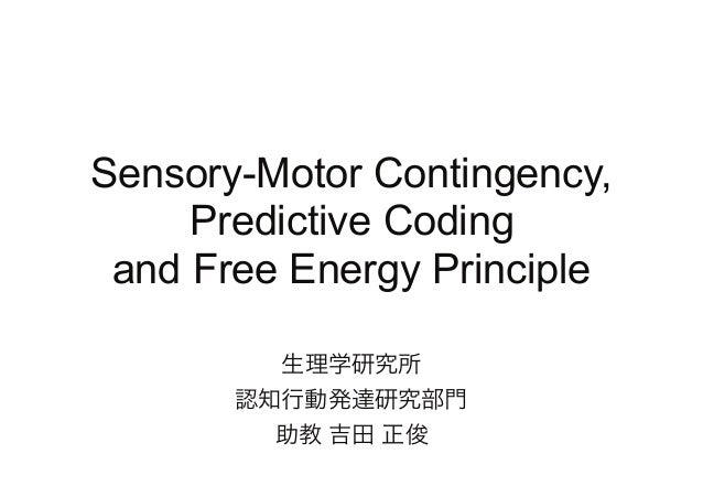 Sensory-Motor Contingency, Predictive Coding and Free Energy Principle 生理学研究所 認知行動発達研究部門 助教 吉田 正俊