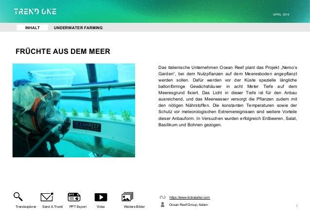 """FRÜCHTE AUS DEM MEER Das italienische Unternehmen Ocean Reef plant das Projekt """"Nemo's Garden"""", bei dem Nutzpflanzen auf d..."""