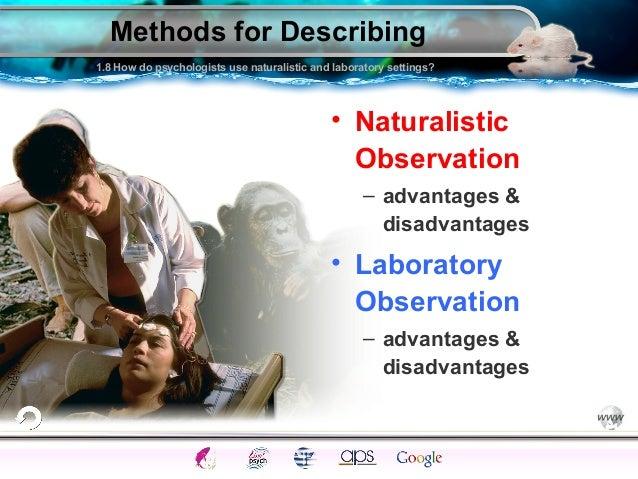 Define naturalistic study definition