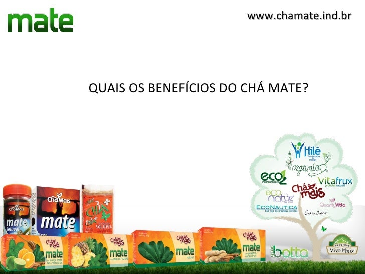 www.chamate.ind.brQUAIS OS BENEFÍCIOS DO CHÁ MATE?