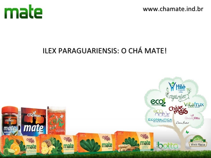 www.chamate.ind.brILEX PARAGUARIENSIS: O CHÁ MATE!